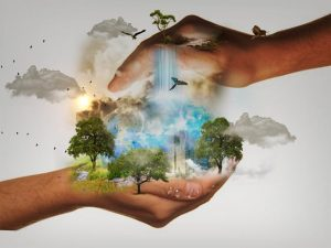 Help make Life on our Planet Sustainable
